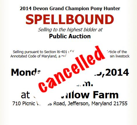 The public auction scheduled by Maryland hunter/jumper trainer Kim Stewart has been canceled.