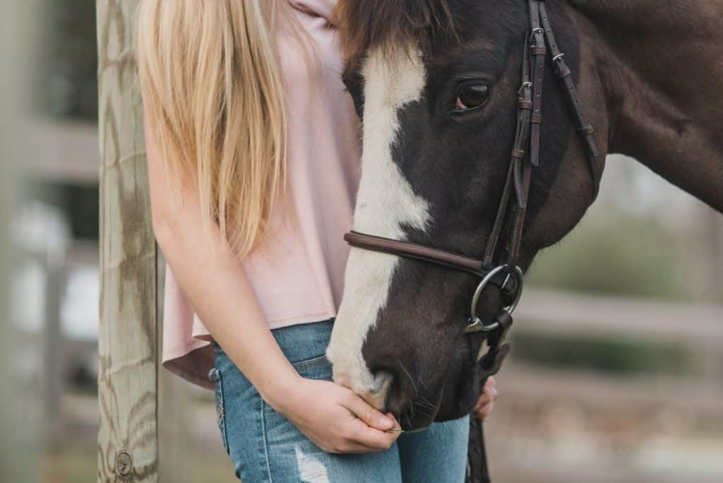 Ponying Up: The Truth About Child Sex Offenders