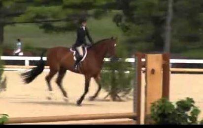 USEF Opens Investigation into Death of Scott Stewart's Horse