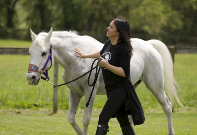 John Stewart Horse Adoption