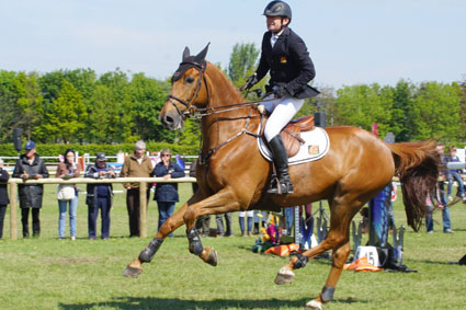 Update: Men Not Connected to the Killing of Grand Prix Jumper Phedras de Blondel