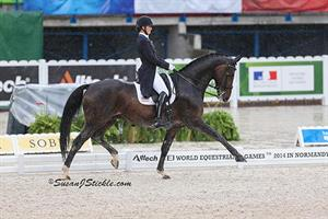 Adrienne Lyle and Wizard Lead U.S. Effort on Day One of Dressage Team Championship in Normandy
