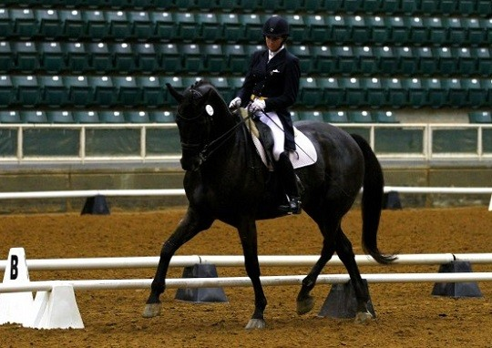 Dressage's Bean Pleads Guilty to Assault