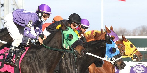 Quarantine Imposed at Parx Racing after New EHV-1 Case