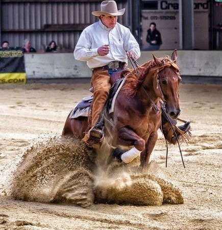 EHV-1 Cases Diagnosed in Two Illinois Horses