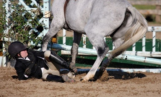 Horse Sports Contribute to Highest Level of Traumatic Brain Injuries: Study