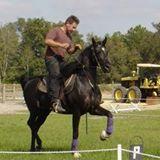 Michigan Arabian Trainer Charged with Animal Cruelty
