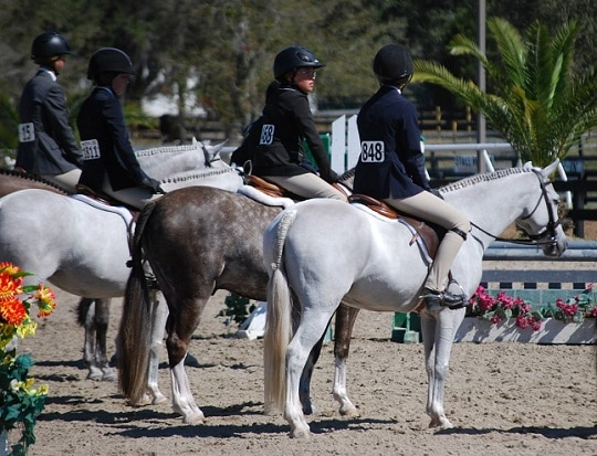 USEF Dismisses Protest Against Mandarino