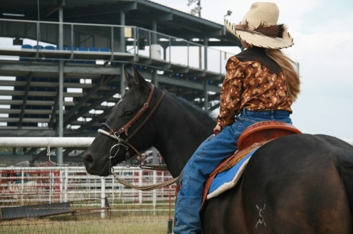 Barrel Racing Mare Confirmed with Neurologic Equine Herpes