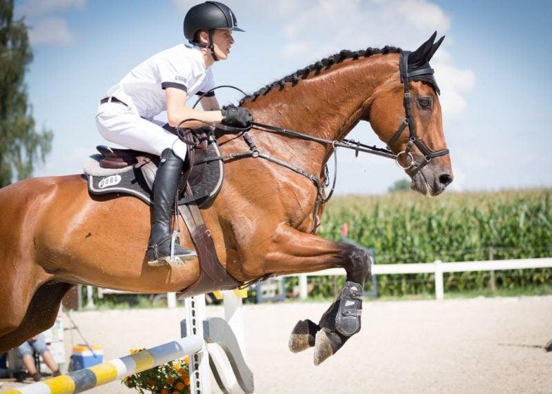 US Equestrian rule change depo provera - MPA