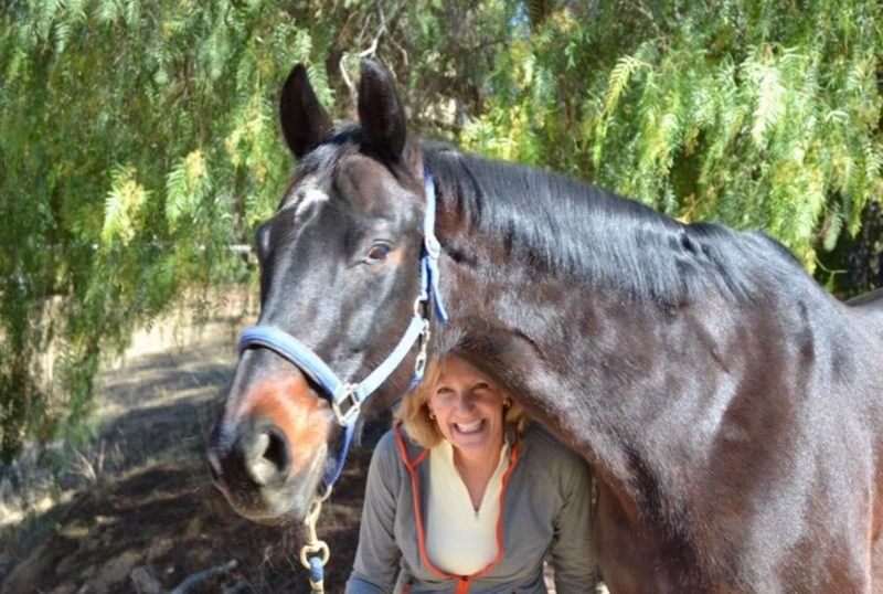 Mickey and Tango died after allegedly eating tainted Nutrena SafeChoice Senior Horse Feed dry pellets in April 2017.