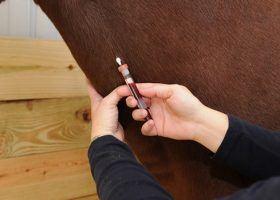 Kansas Confirms 2 More EIA Positive Horses