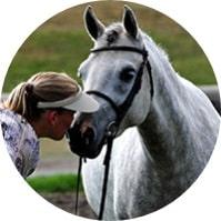 Need an equine appraiser? Meet Tracy Dopko