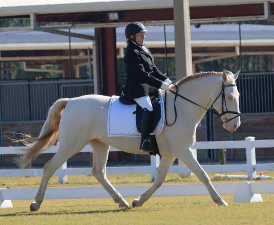 Patricia Elder: Riders from the Far Side of 40