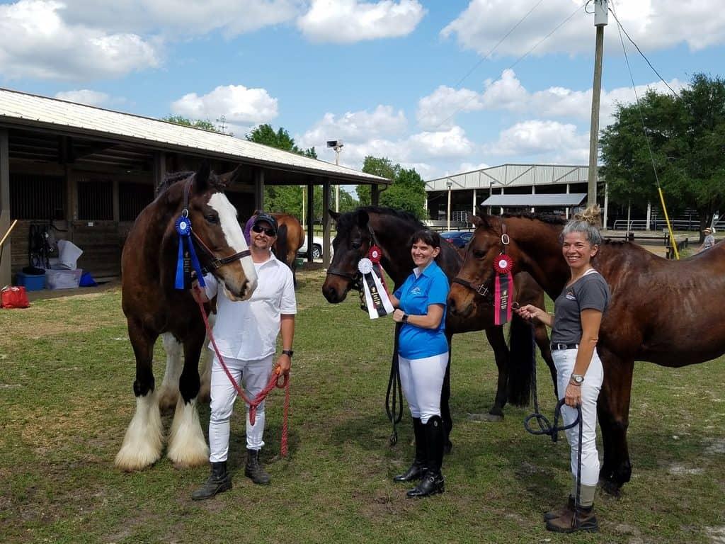 Horse & Rider: Go from Ordinary to Extraordinary