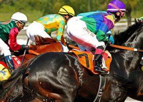 22 horses die on Santa Anita racetrack